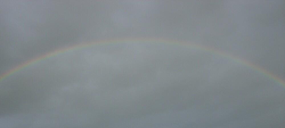 Rainbow Skies by shawnathomas