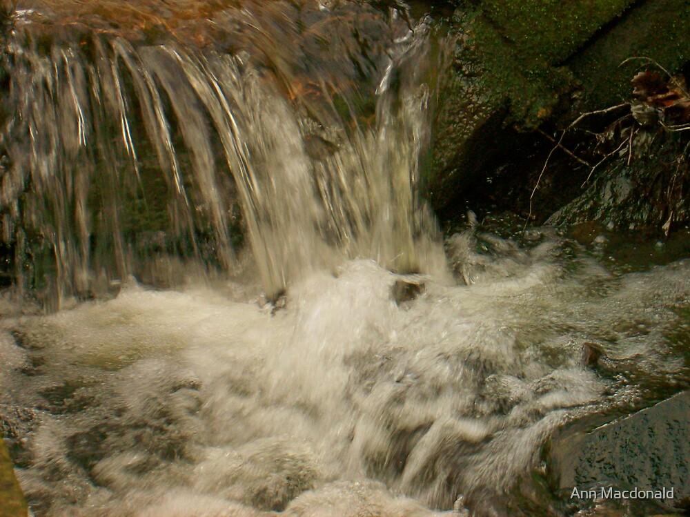 Gushing waters by Ann Macdonald