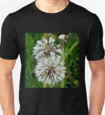 Dandelions During Drizzle T-Shirt