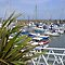 Members Choice - Harbour FULL of Boats