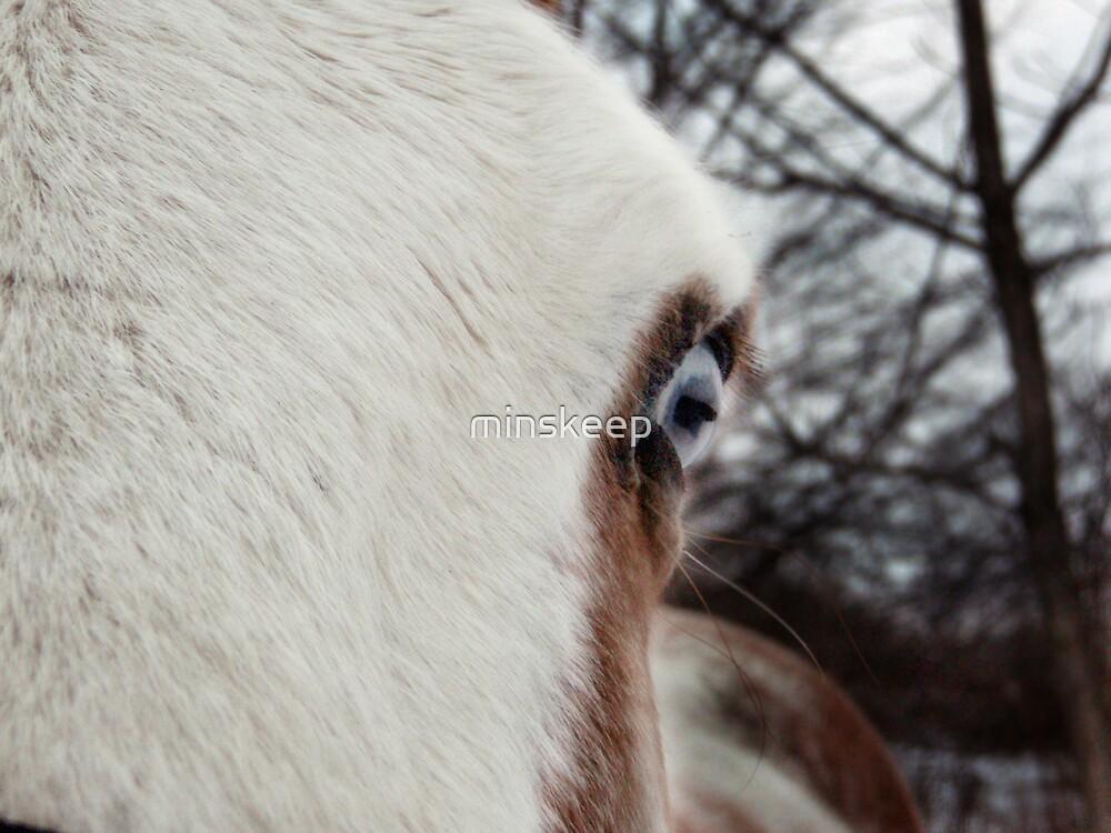 Mr. Blue Eye by minskeep