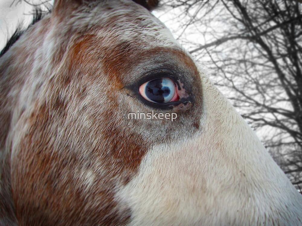Glassy Eyes by minskeep