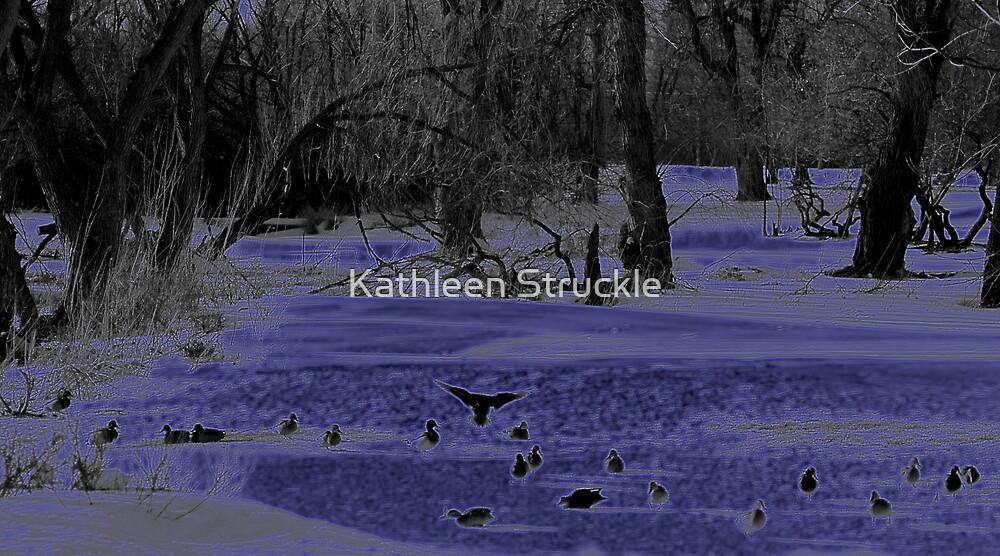 Ducks In Winter by Kathleen Struckle