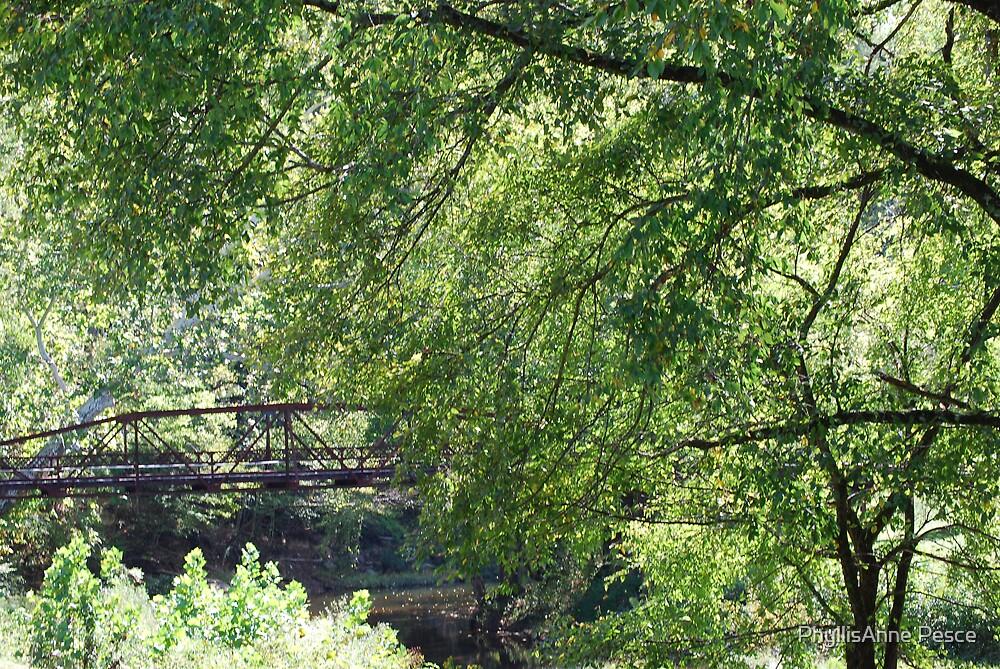 Bridge in Summer by PhyllisAnne Pesce