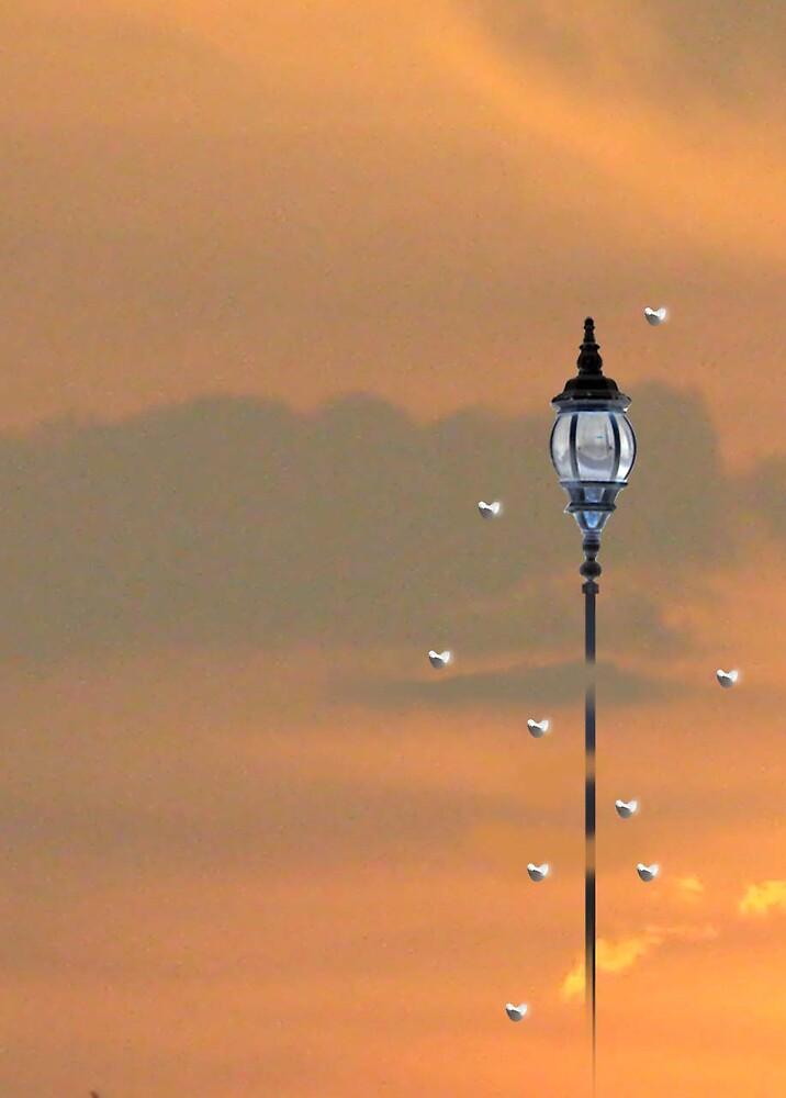 Sky Lamp by yuanyusef