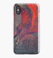 UNTRUTHS iPhone Case