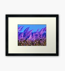 Purple Canefields of Home Framed Print