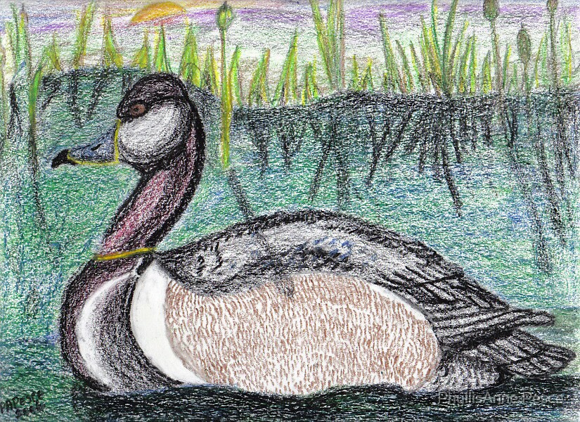Duck I by PhyllisAnne Pesce