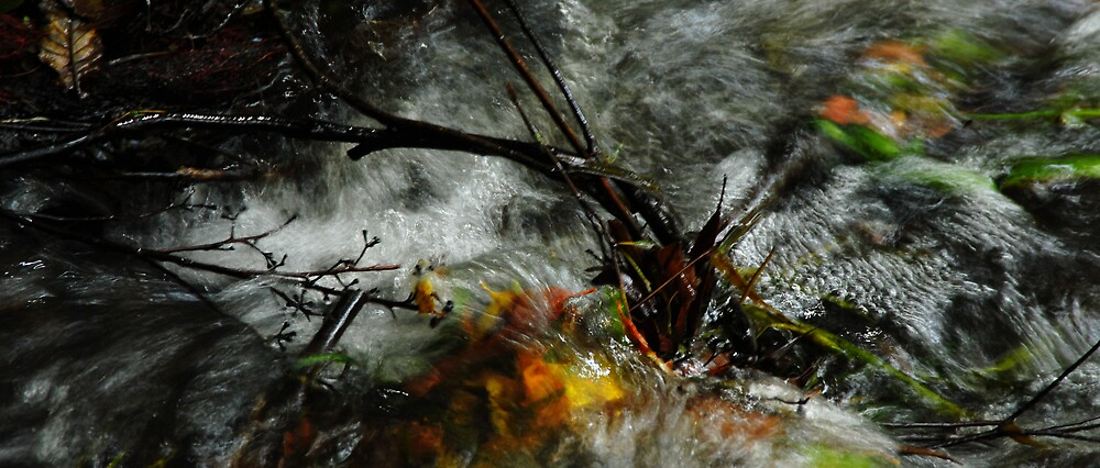 swish by Sheryleigh