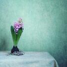 Spring awakening by Priska Wettstein
