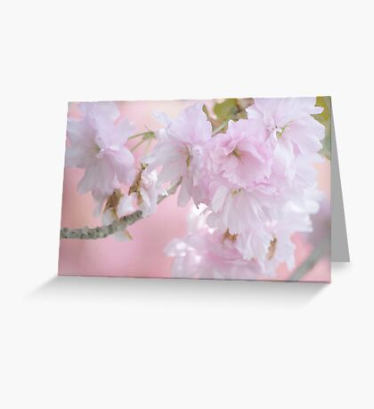 """In The Pink"" Greeting Card"