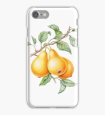 Unique illustrate realistic pears on a case for the phone. iPhone Case/Skin