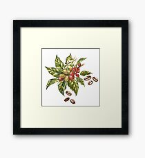 Watercolor coffee 02 Framed Print
