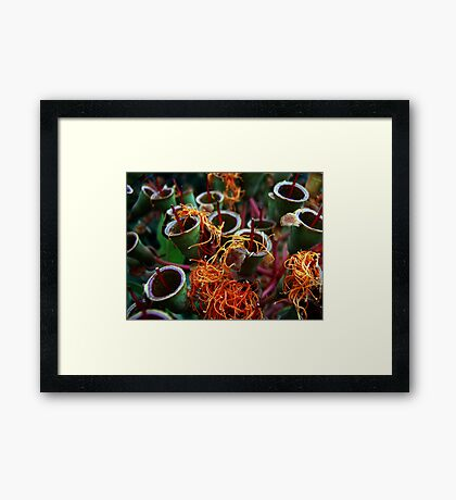 Party Poppers Framed Print