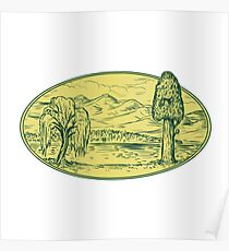 Willow And Sequoia Tree Lake Mountains Oval Drawing Poster