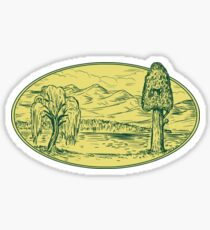 Willow And Sequoia Tree Lake Mountains Oval Drawing Sticker