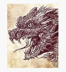 Dragon Ink Photographic Print