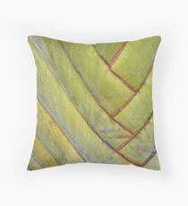 Lined  Throw Pillow