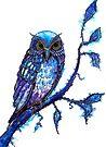 Owl - The Wisdom Keeper by Linda Callaghan