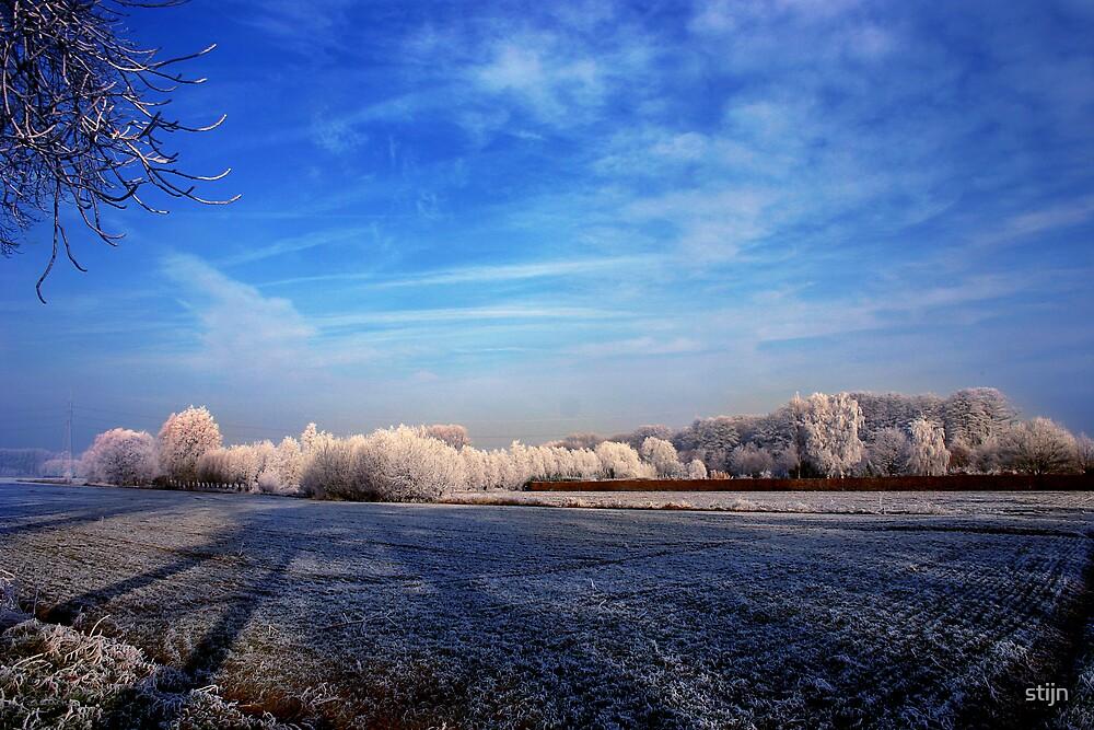 Winter Wonderland by stijn