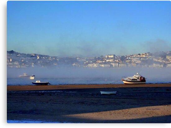 Mist over Water by Charmiene Maxwell-Batten