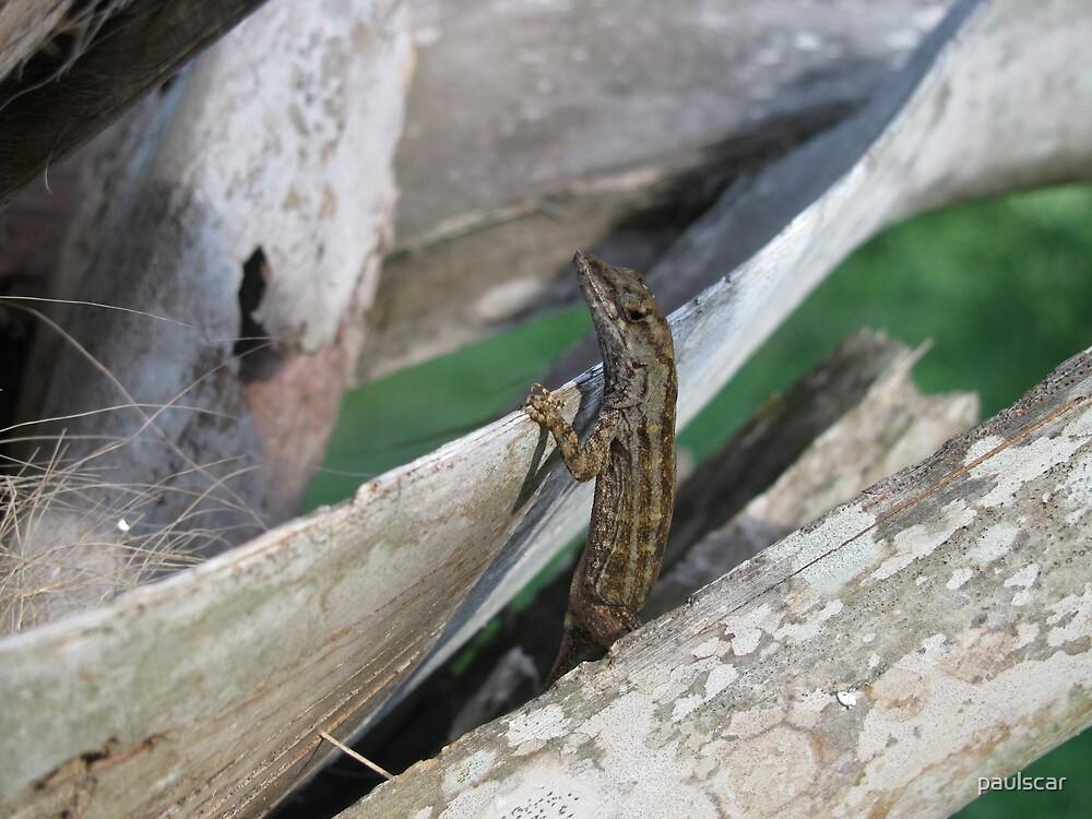 louie the lizard by paulscar