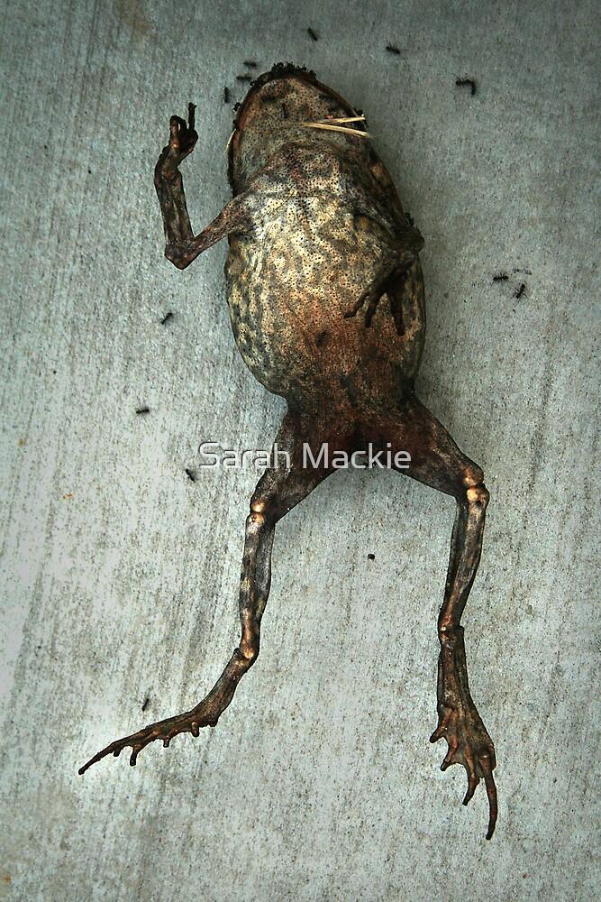 Splayed Toad by Sarah Mackie