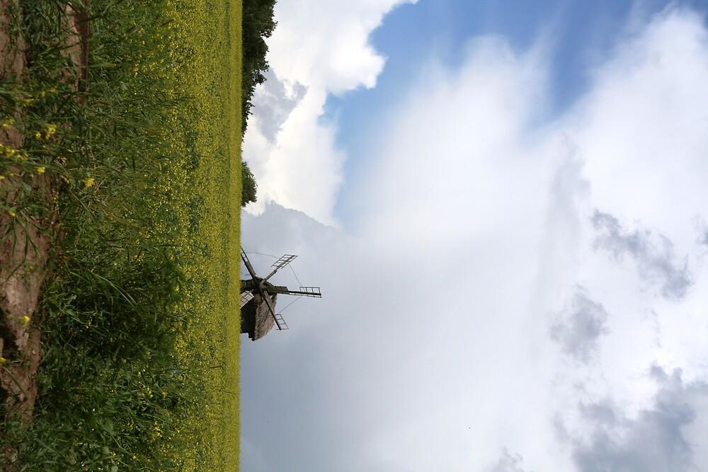 Windmill With Storm, Pirogovo, Ukraine by Karen Bowden