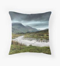 Wetland Throw Pillow