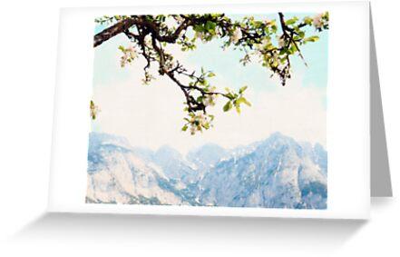 Apfelblüten und Berge von BrookeRyanPhoto