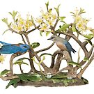 Male and Female Bluebird T-shirt by Walter Colvin