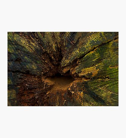 The colours of decay. Photographic Print