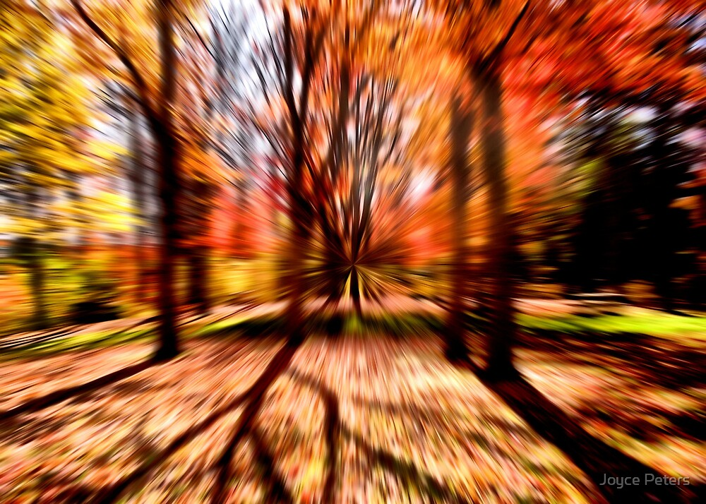 A Blur Of Autumn by Joyce Peters