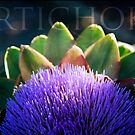 Blooming Artichoke by Lynn Starner