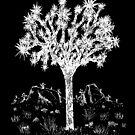 Joshua Tree (Nacht) von Hinterlund