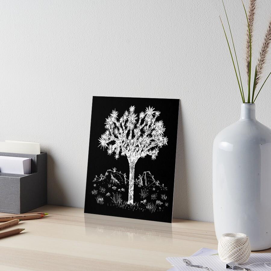 Joshua Tree (Nacht) Galeriedruck