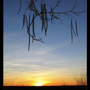 Christmas Sunset by BCStevens