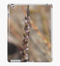 Pretty pink pussy willows iPad Case/Skin