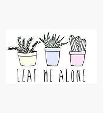 Leaf me alone Photographic Print