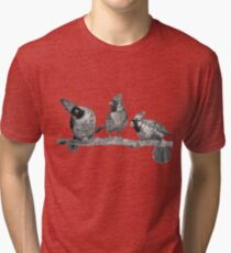 Three Northern Cardinals Birds Print - Bird Drawing Art Tri-blend T-Shirt