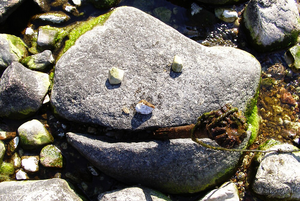 Nature Smiles to Us :) by Marko Palm