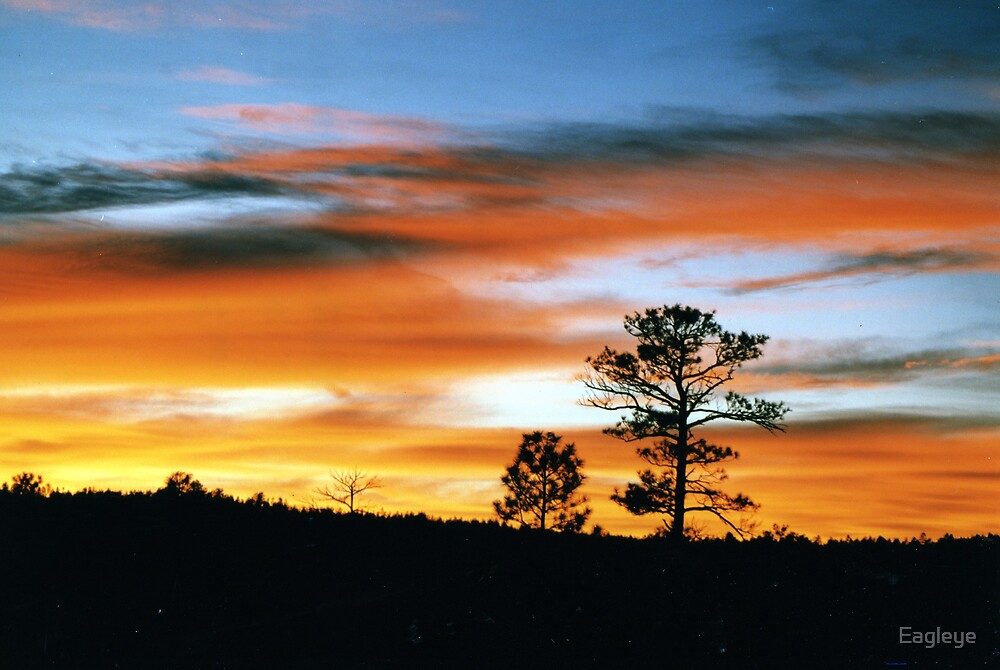 Good Night Arizona by Eagleye