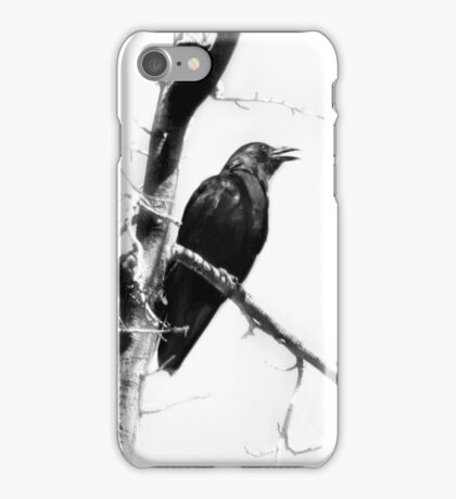 Mother Crow iPhone Case/Skin