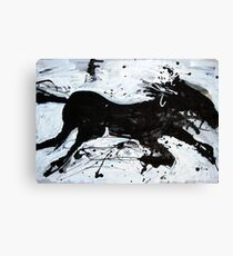 Black Horse 2 Canvas Print