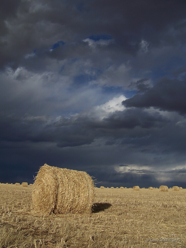 Storm Clouds and Round Bales by amandameans