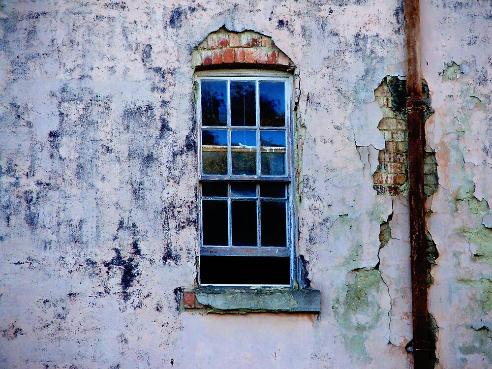 Window to the... by Belinda Fraser