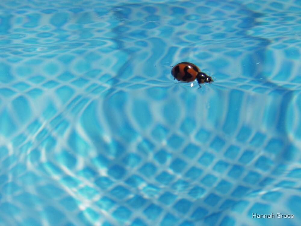 Ladybug Blues by Hannah Grace