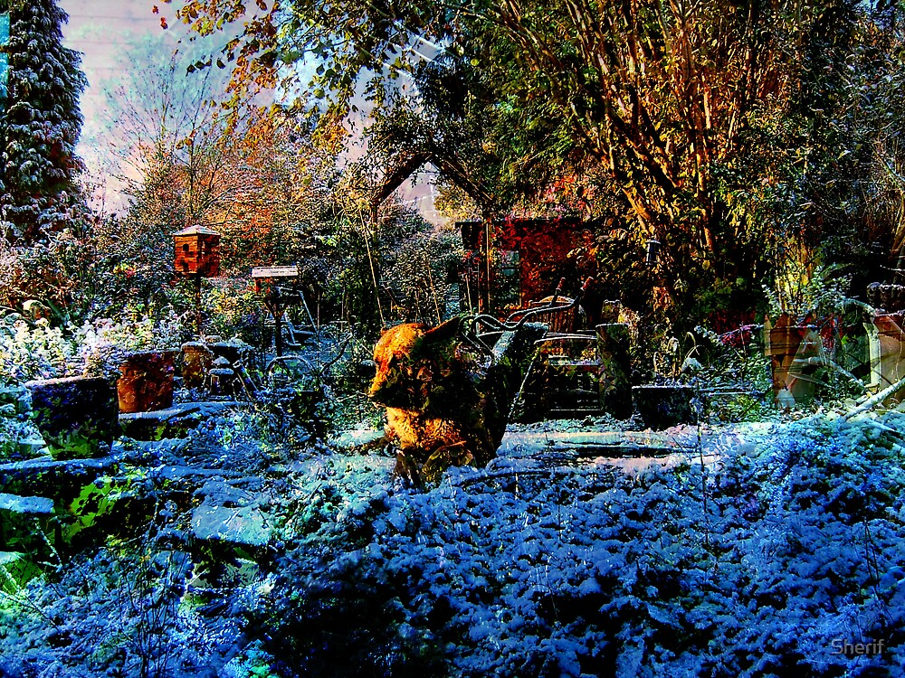 The Winter Garden by Sherif