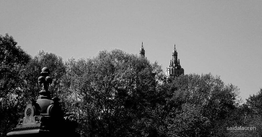 Central Park by saidalauren