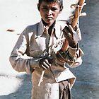 Langa caste boy playing the Sindhi Sarangi by indiafrank